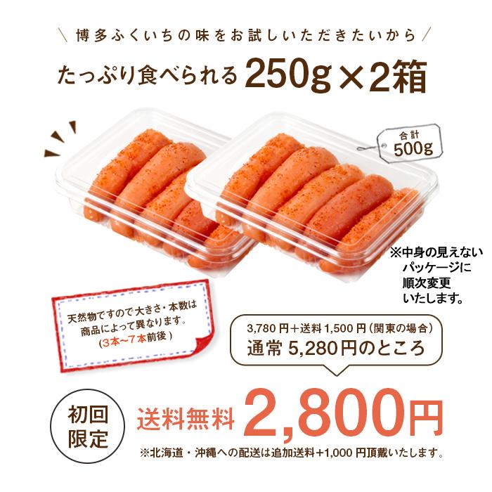 NEW-250_お試しめんたい250g